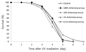 artemisia annua increases resistance to heat and oxidative