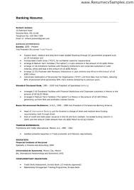 Resume Sample Vice President by Entry Level Bank Resume