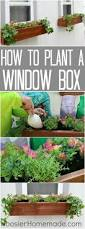 Homemade Garden Box by 763 Best Home Garden Ideas Images On Pinterest Flower
