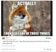 What Does The Fox Say Meme - popular memes of 2013 houston chronicle