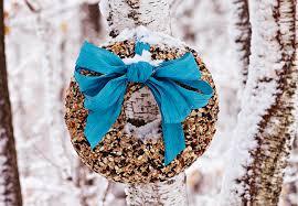 diy bird seed feeders