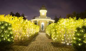 Missouri Botanical Gardens Garden Glow At The Missouri Botanical Garden