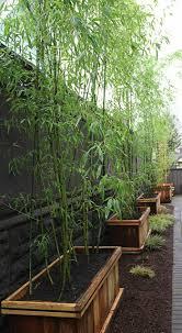 Ideen Aus Holz Fur Den Garten 28 Interessante Sichtschutz Ideen Für Garten Archzine Net