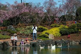 Auburn Botanical Garden Auburn Botanic Gardens Auburn Bims Classes Events