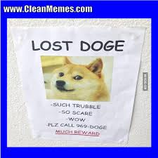 Funny Doge Memes - dog memes page 12 clean memes