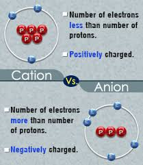 Cation And Anion Periodic Table The Basic Difference Between A Cation And An Anion Chemistry
