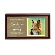 personalized cat gifts unique personalized pet gifts