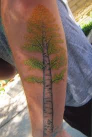 aspen tree search ink