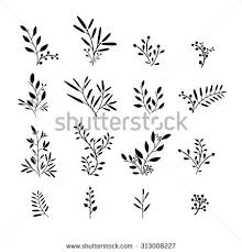 set monochrome plant elements bouquets kits stock vector 313008227