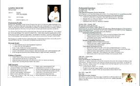 executive chef resume template chef sle resume resume pastry chef sle mesmerizing resume