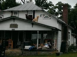 image gallery redneck house