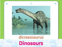 english flashcards for kids 2 1 1 apk download android education