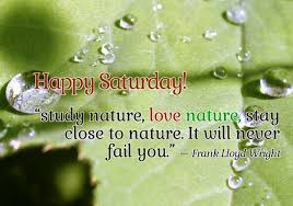saturday wishes quotes and sayings with image page 1