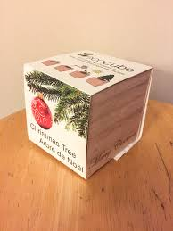 ecocube christmas tree ramblings of a cake eater