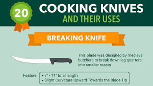 how to use 20 different kitchen knives infographic