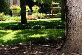 watering schedules schmitz garden center
