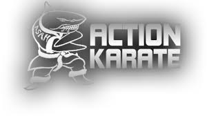 the light program jamison pa jamison martial arts classes for kids adults birthday parties