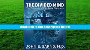audiobook the divided mind the epidemic of mindbody disorders