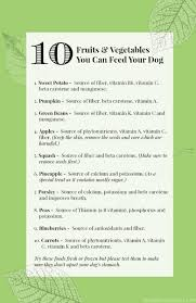 recipes for dog treats healthy dog treats my cookbook low carb healthy
