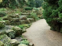 giardini rocciosi in ombra giardini rocciosi fai da te crea giardino