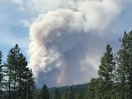 Wild Fire Enumclaw by Upper County Fire Update Level 2 Evacuation Notices Issued In