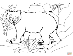 spectacled bear coloring pages free coloring pages