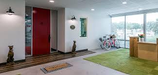 Rug Medical Term Rug Doctor Reinvents With New Offices Products U0026 Branding