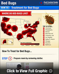How Do You Get Rid Of Skunks In Your Backyard How To Get Rid Of U0026 Kill Bed Bugs Diy Bed Bug Treatment
