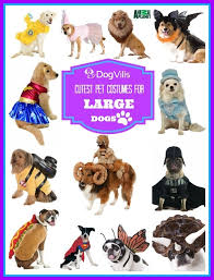how to measure your pet for costumes for large dogs