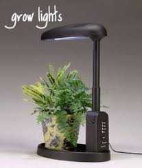Grow Lights For Indoor Herb Garden - grow lights can make you and your plants happier gardening