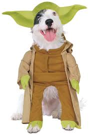 Dogs Halloween Costumes Yoda Dog Costume
