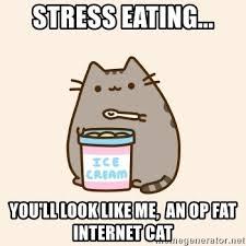 Emotional Eating Meme - stress eating you ll look like me an op fat internet cat