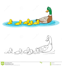 dot to dot and coloring page ducklings at the pond stock vector