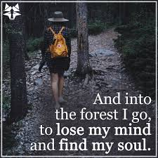 Scottish Love Quotes by 17 Hiking Quotes Quotes For Inspiration And Motivation