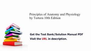 Human Anatomy And Physiology Study Guide Pdf Practice Test Bank For Principles Of Anatomy And Physiology By