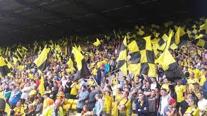 Blind Stupid And Desperate Southampton Fc In Focus Watford Fc Pl Watford Fc Hornets