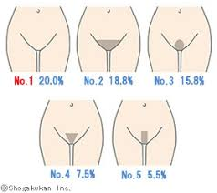 no pubic hair surprisingly fact this is men s favorite form of the pubic hair