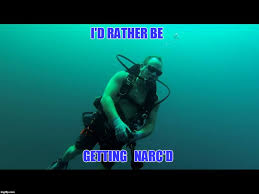 Scuba Meme - id rather be narc d imgflip