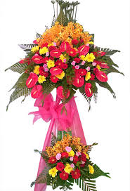 congratulations flowers congratulations flower stand viii flowers and gifts hoa doi