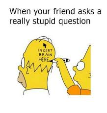 Stupid Friends Meme - when your friend asks a really stupid question insert brain her