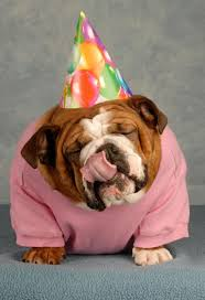 80 best dog parties images on pinterest dog parties birthday