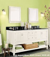 Kids Bathrooms Ideas Colors 100 Best Bathroom Visions Images On Pinterest Bathroom Ideas