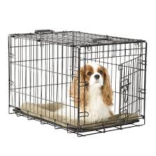 metal wire pet crate christmas tree shops andthat