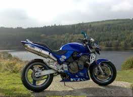 honda cb 600 sportbike rider picture website