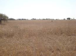 vacant land plots for sale in polokwane