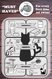 owning a cat for the first time fluffy kitty owning a cat for the first time infographics