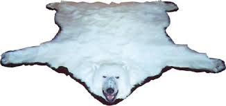 real fur rugs u0026 mounted taxidermy grizzly and brown bear lynx