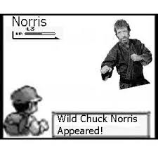 Chuck Norris Pokemon Memes - image 21820 chuck norris facts know your meme
