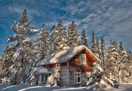 winter snow christmas tree tree house the old abandoned hd wallpaper