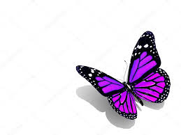 beautiful 3d butterfly stock photo lovart 65870589